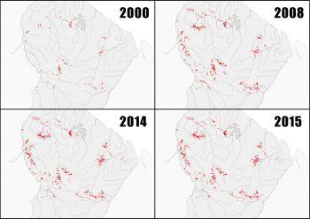 Le WWF publie son suivi des déforestations minières sur le territoire Guyanais